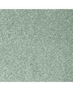 Abingdon Carpets Stainfree Olympus Fern