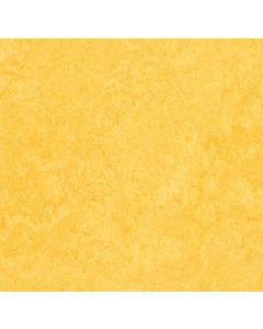 Forbo Marmoleum Click Lemon Zest 33325130x30