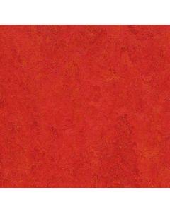 Forbo Marmoleum Click Scarlet 33313130x30