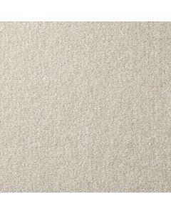 Cormar Carpet Co Apollo Plus Tortilla
