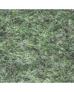 Rawson Carpet Denby Olive SHEET DE206