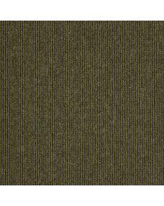 Paragon Macaw Stripe Carpet Tile Lime-Quartz