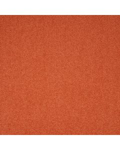 Paragon Maestro Carpet Tile  Auburn Falls