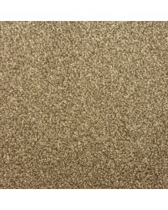 Abingdon Carpets Stainfree Maximus Biscotti