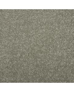 Abingdon Carpets Stainfree Maximus Parchment