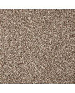Cormar Carpet Co Primo Grande Beaver