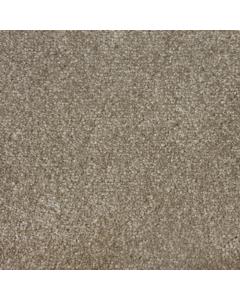 Abingdon Carpets Stainfree Sophisticat Latte