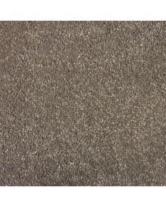 Abingdon Carpets Stainfree Sophisticat Mocha