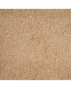 Abingdon Carpets Stainfree Arena Plus Cool Beige