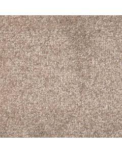 Abingdon Carpets Stainfree Arena Plus Cool Silver