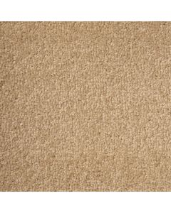 Abingdon Carpets Stainfree Arena Devon Cream