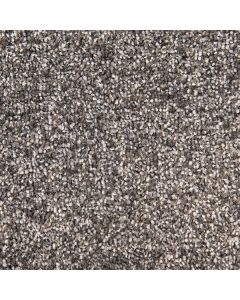 Abingdon Carpets Stainfree Arena Plus Nickel