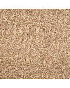 Abingdon Carpets Stainfree Arena Plus Stone