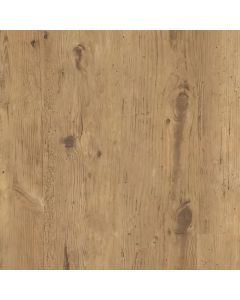 TLC True Forest Rustic Birch 5183