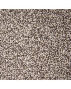 Abingdon Carpets Stainfree Ultra Biscotti