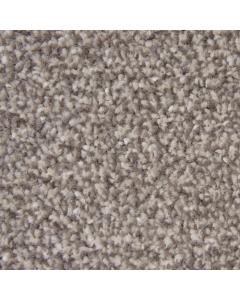 Abingdon Carpets Stainfree Twist Latte