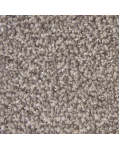 Abingdon Carpets Stainfree Ultra Latte