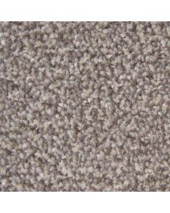 Abingdon Carpets Stainfree Style Latte