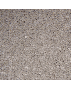 Abingdon Carpets Stainfree Ultra Moccasin