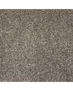 Abingdon Carpets Stainfree Dallas Bearhug