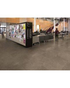 Polyflor Expona Commercial Warm Grey Concrete 5064